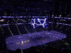 a shot from our seats at a tampa bay lighting game